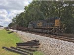 CSX 9010 lays over with a MOW train